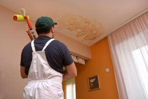 emergency ceiling roof service