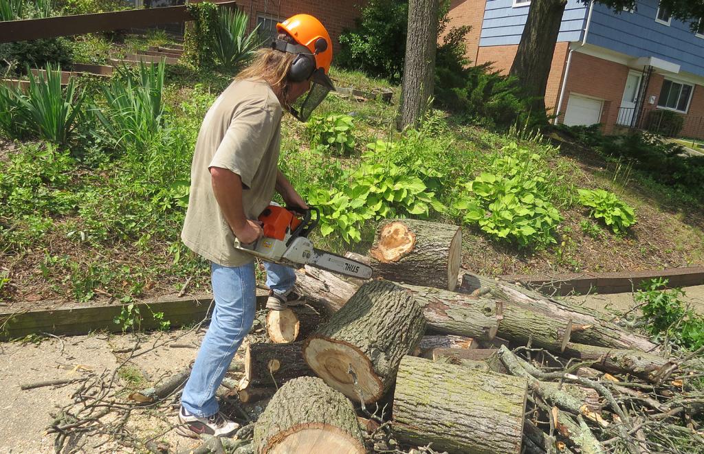 bartlett tree service